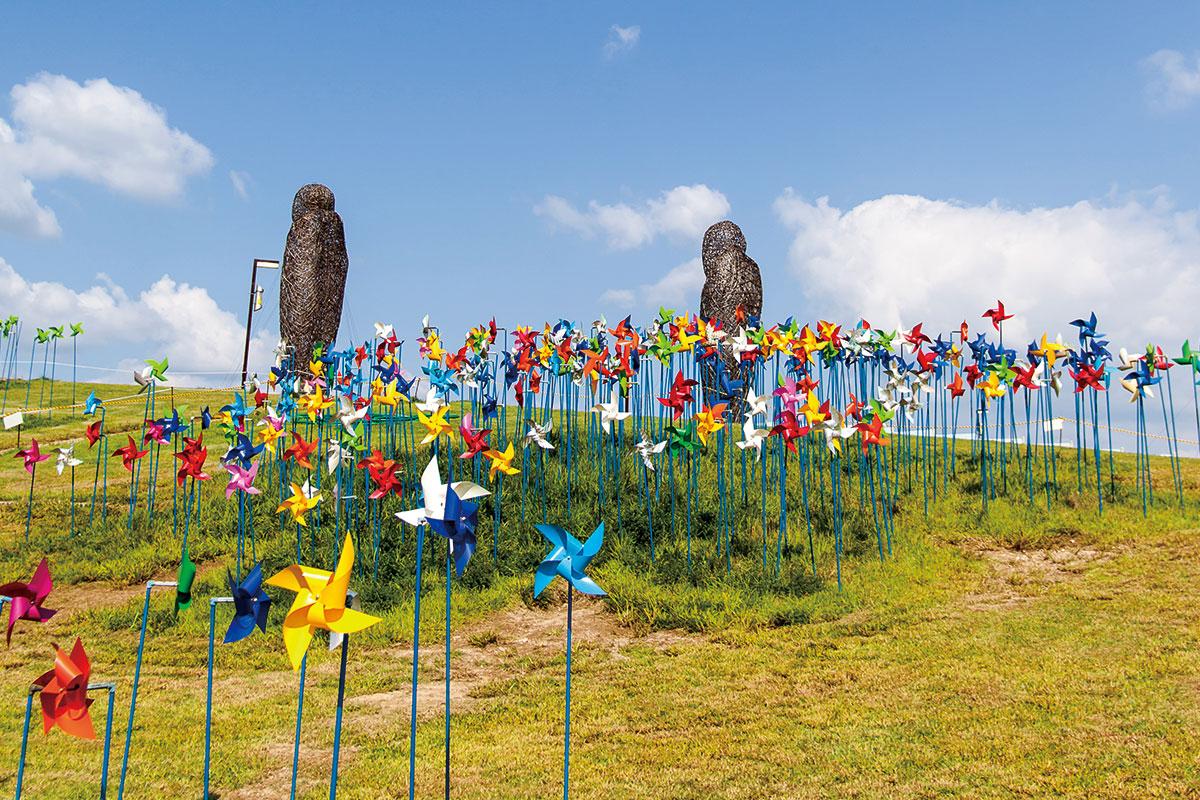 เส้นทางเดินเท้า สวนสันติภาพ : DMZ Eco Peace Park Trail
