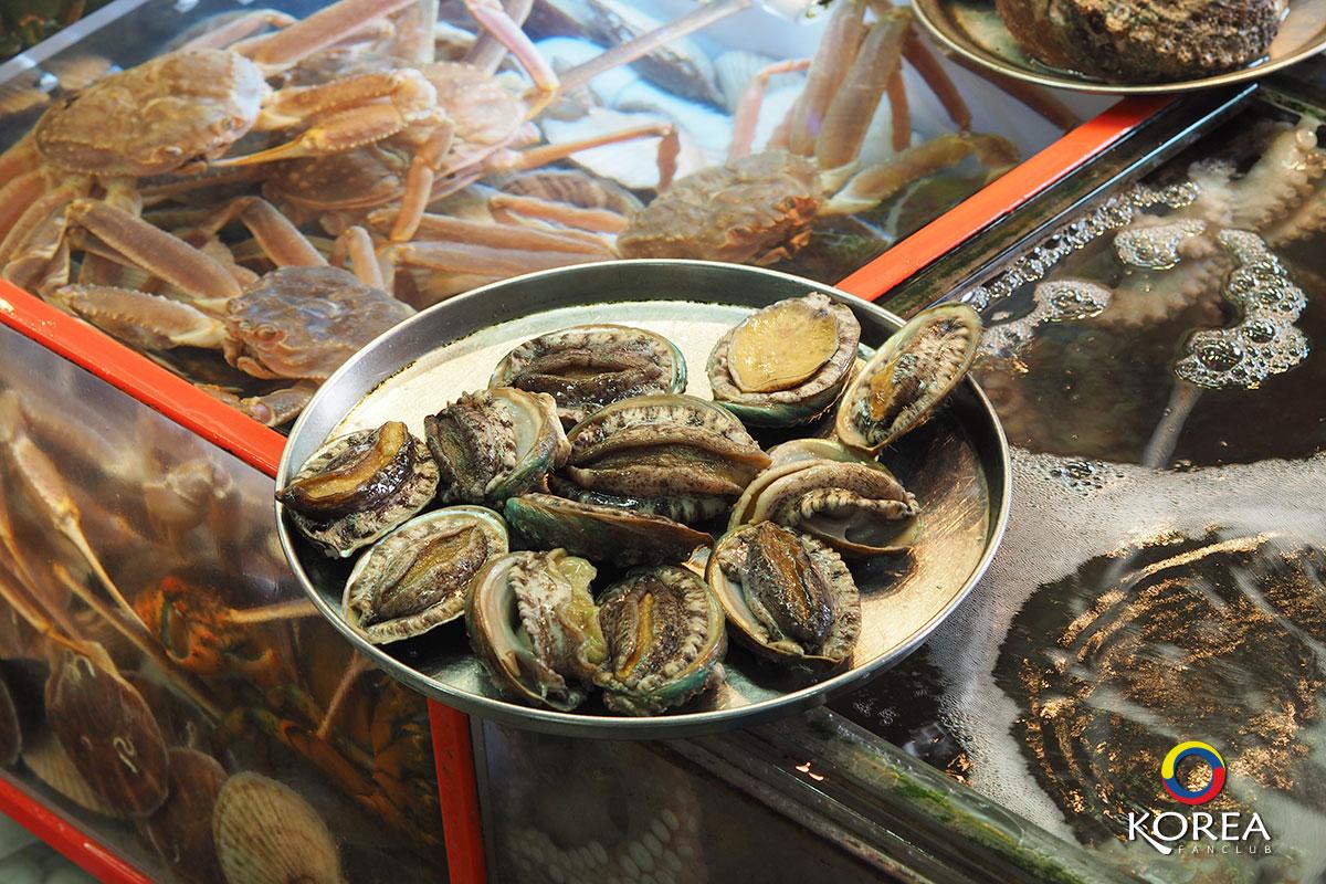 ตลาดปลาซกโช  : Sokcho Tourist & Fishery Market